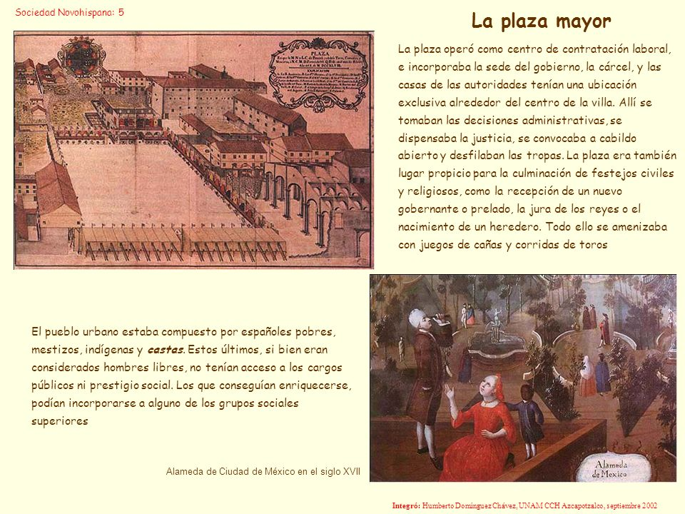 Sociedad Novohispana: 5