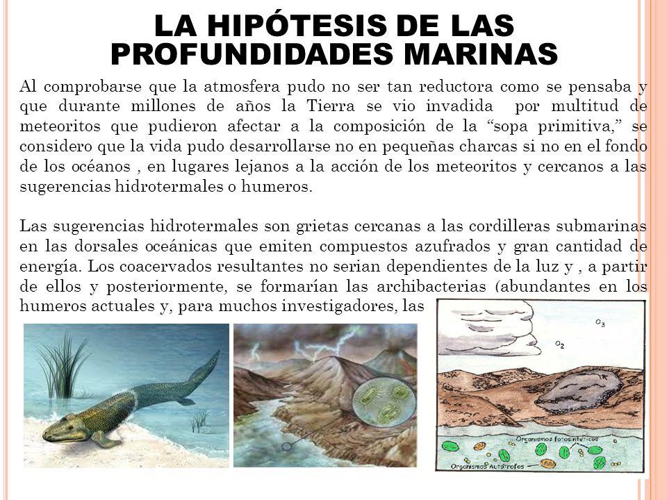 LA HIPÓTESIS DE LAS PROFUNDIDADES MARINAS
