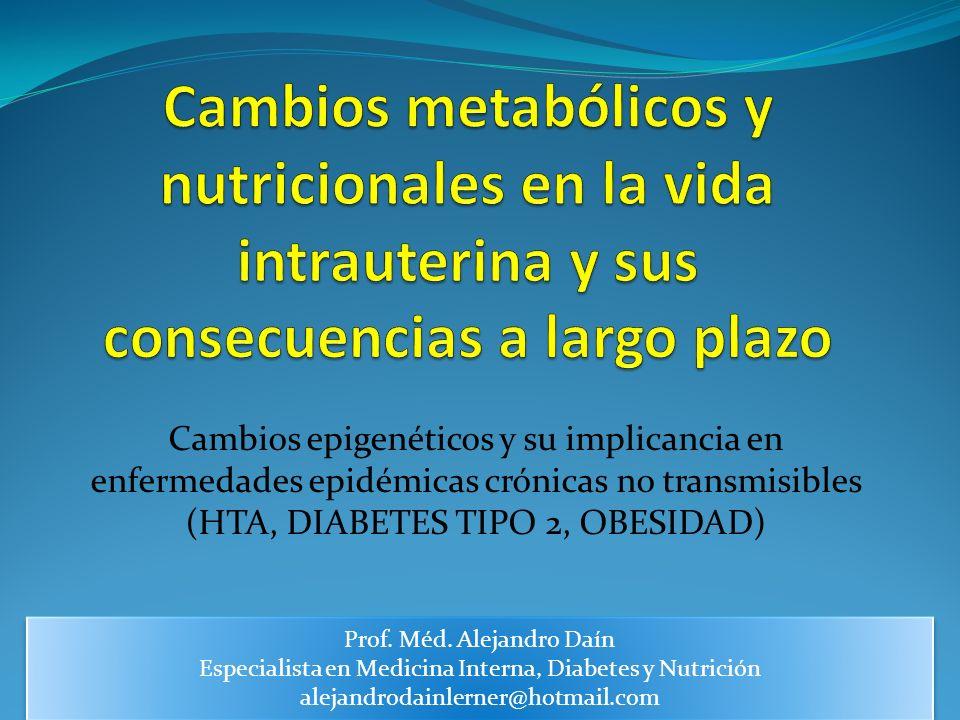 Cambios metabólicos y nutricionales en la vida intrauterina y sus consecuencias a largo plazo