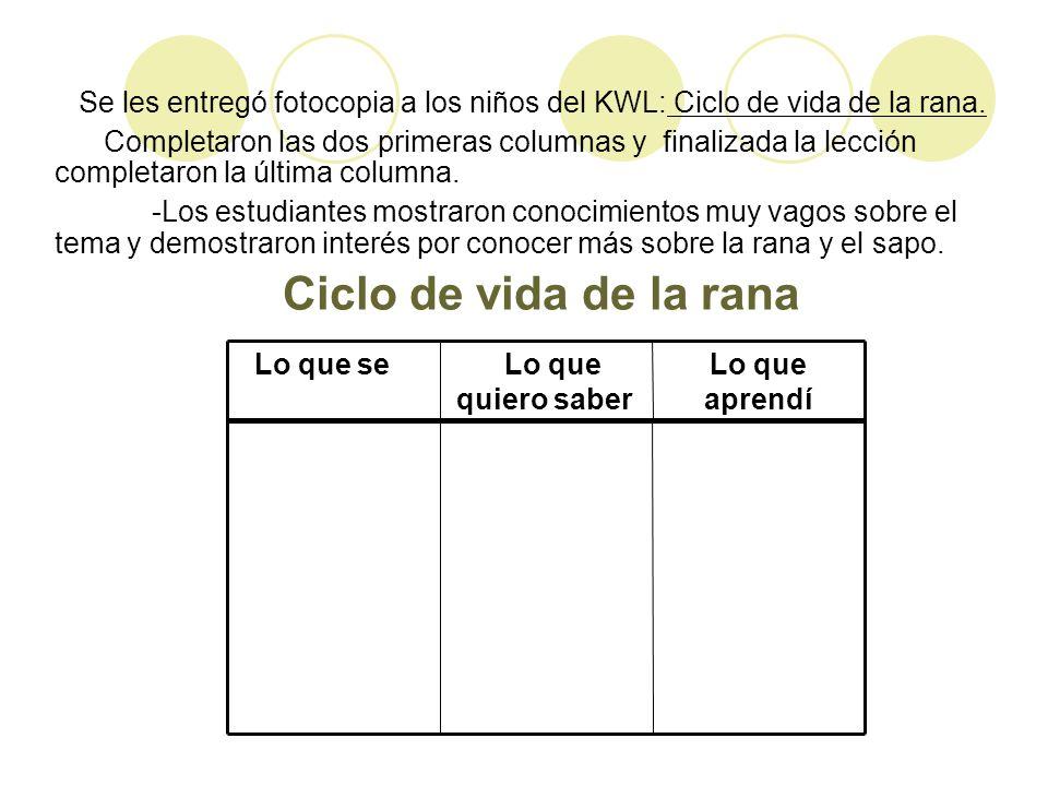 Se les entregó fotocopia a los niños del KWL: Ciclo de vida de la rana.