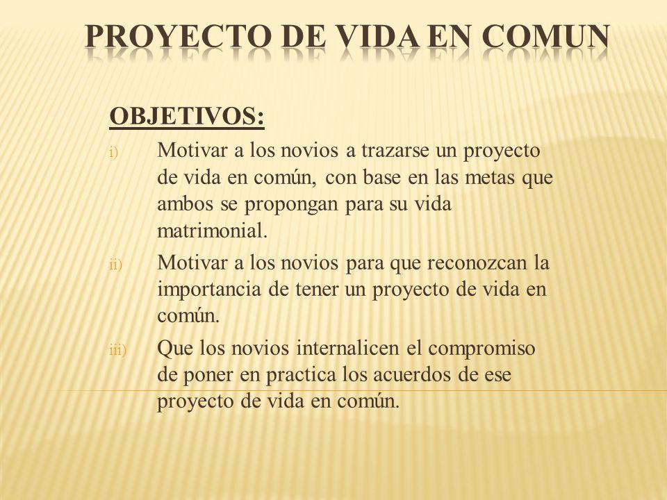 PROYECTO DE VIDA EN COMUN
