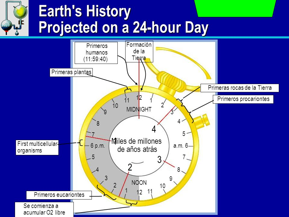 Earth s History Projected on a 24-hour Day