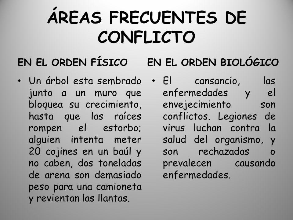 ÁREAS FRECUENTES DE CONFLICTO