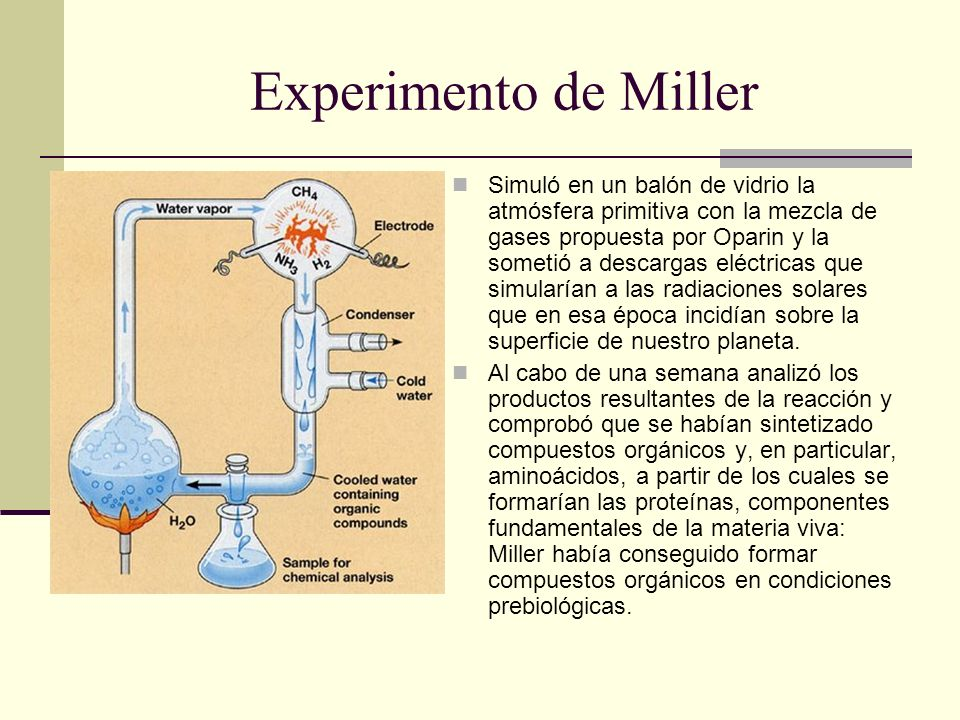 Experimento de Miller