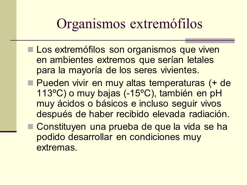 Organismos extremófilos