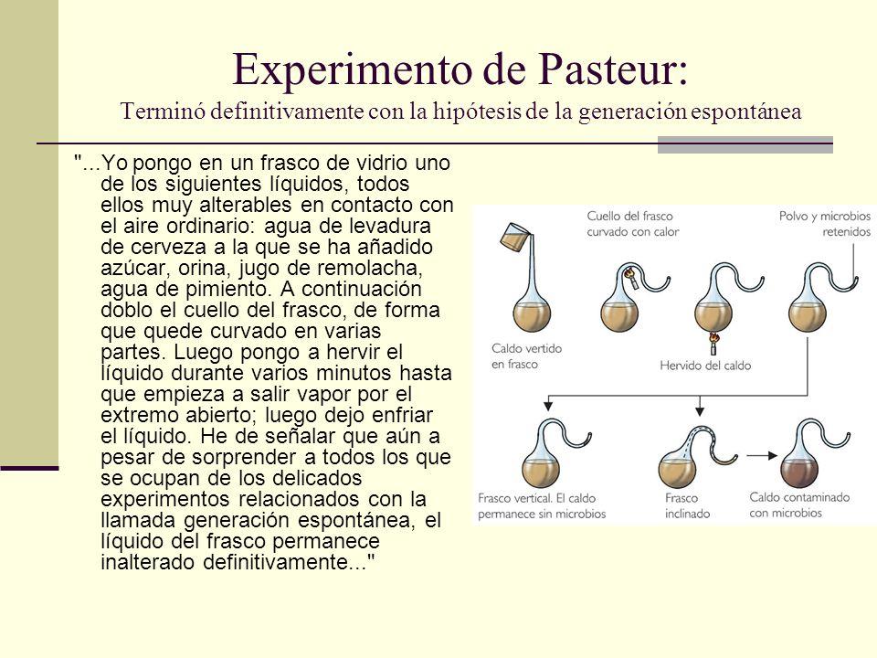 Experimento de Pasteur: Terminó definitivamente con la hipótesis de la generación espontánea