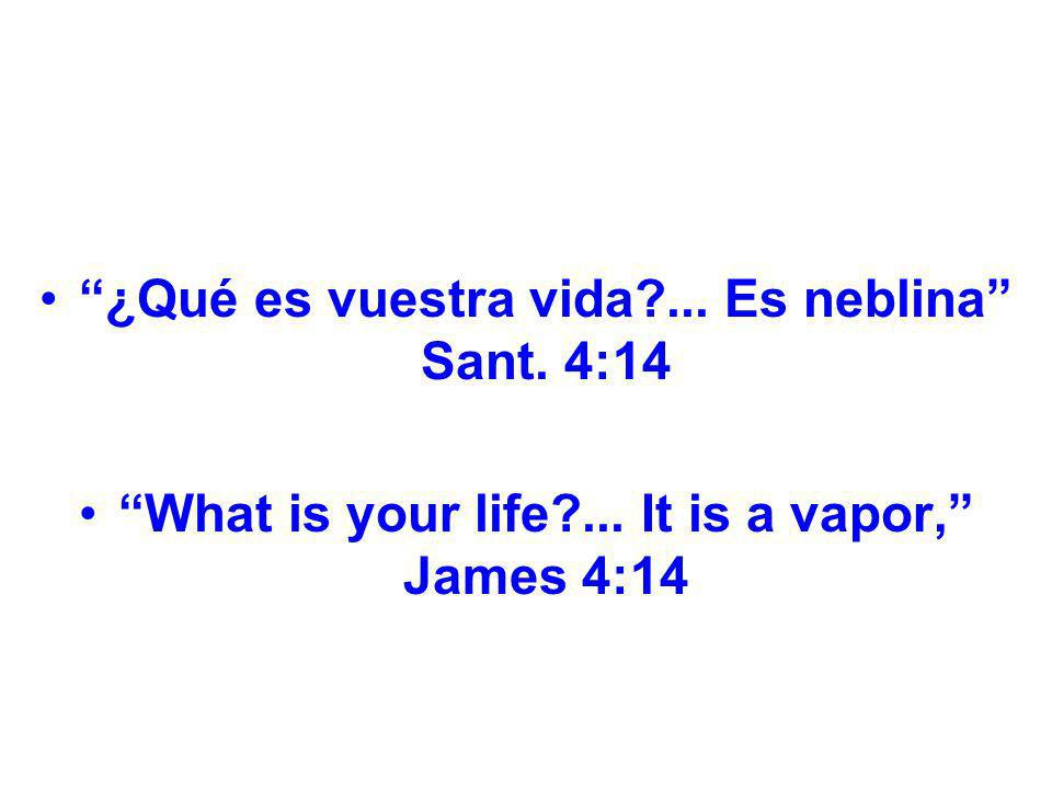 ¿Qué es vuestra vida ... Es neblina Sant. 4:14