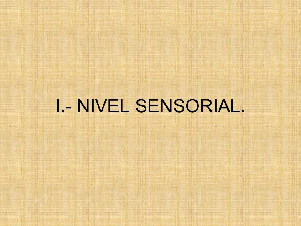 I.- NIVEL SENSORIAL.