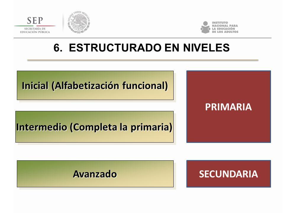 Inicial (Alfabetización funcional) Intermedio (Completa la primaria)