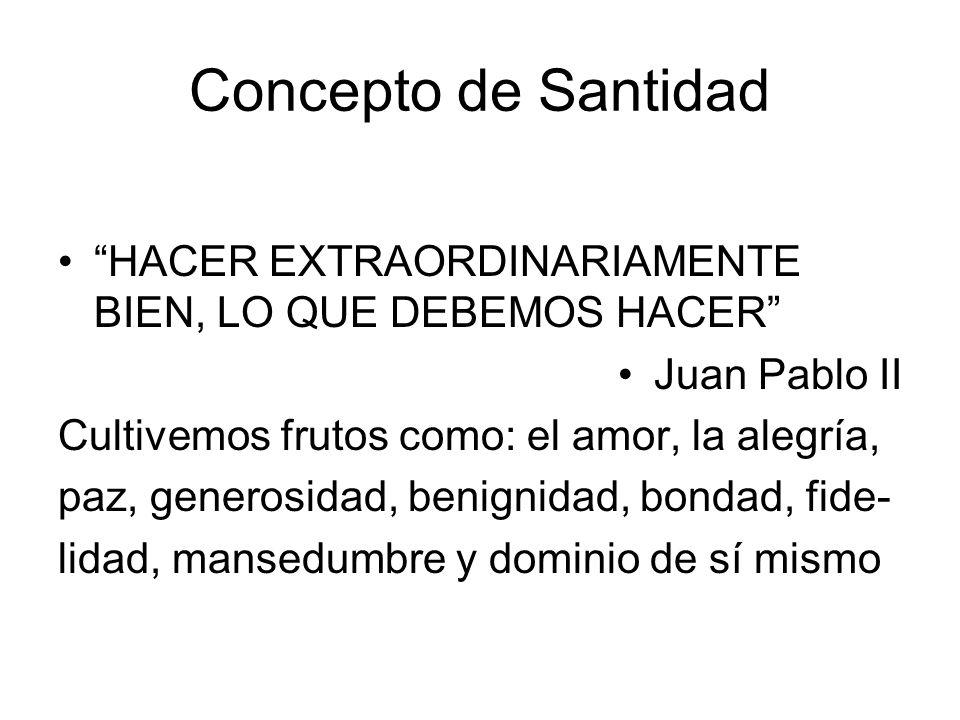 Concepto de Santidad HACER EXTRAORDINARIAMENTE BIEN, LO QUE DEBEMOS HACER Juan Pablo II. Cultivemos frutos como: el amor, la alegría,