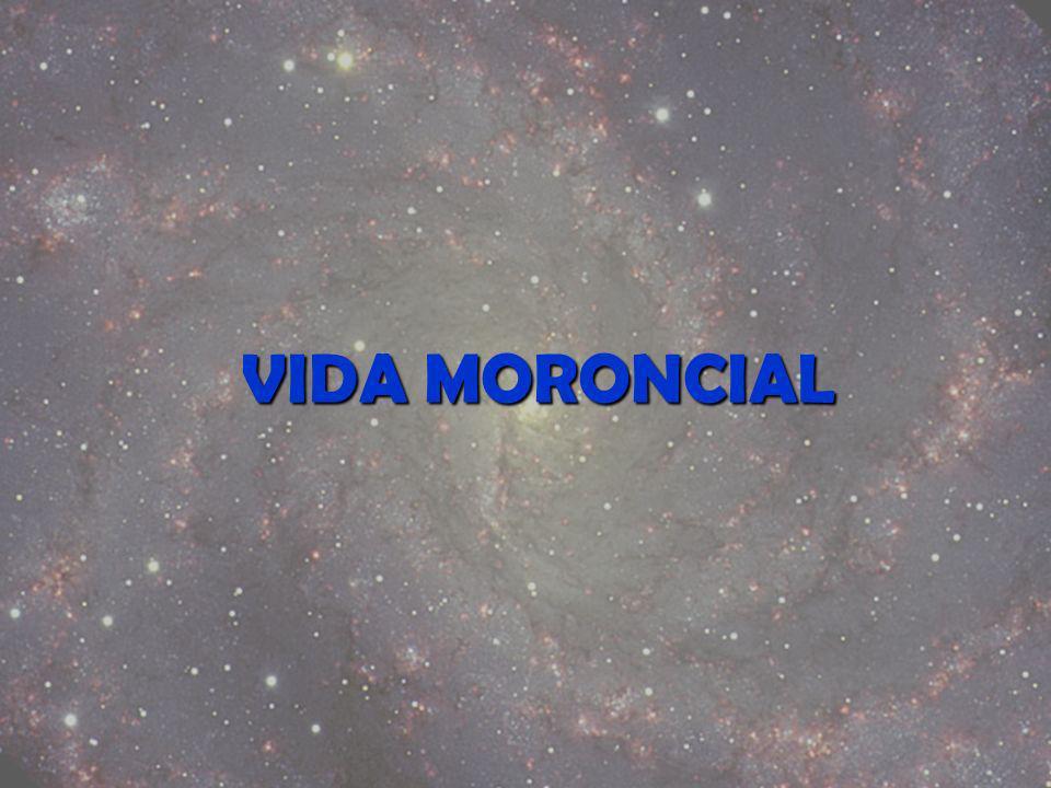 VIDA MORONCIAL
