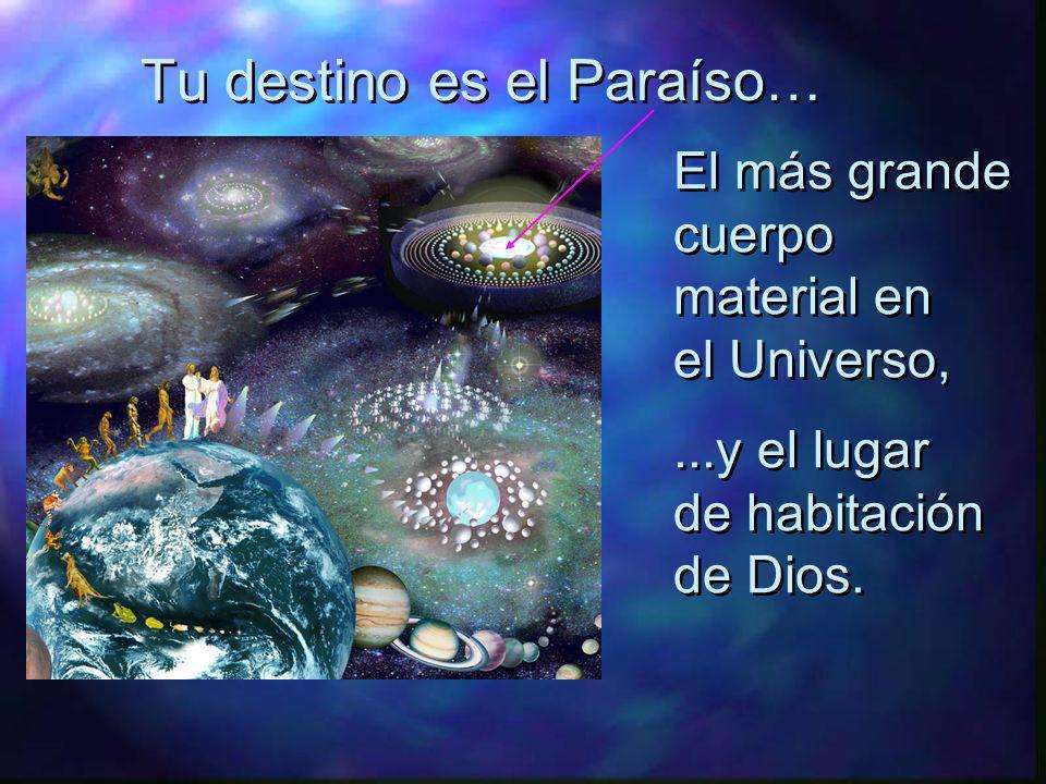 Tu destino es el Paraíso…