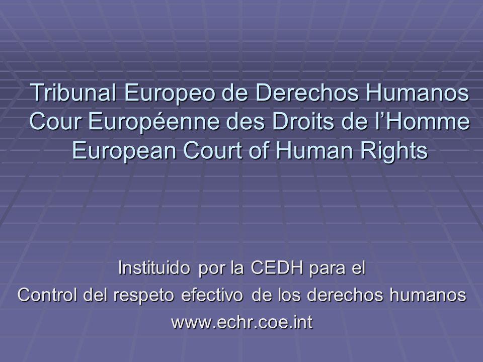 Tribunal Europeo de Derechos Humanos Cour Européenne des Droits de l'Homme European Court of Human Rights