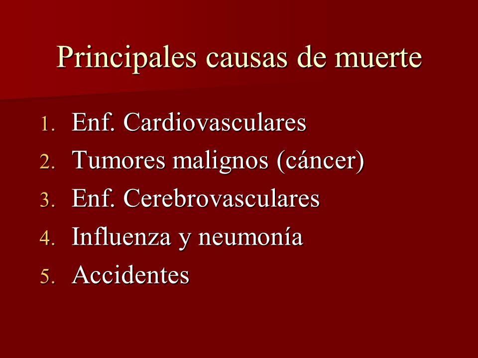 Principales causas de muerte