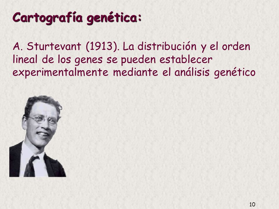 Cartografía genética: