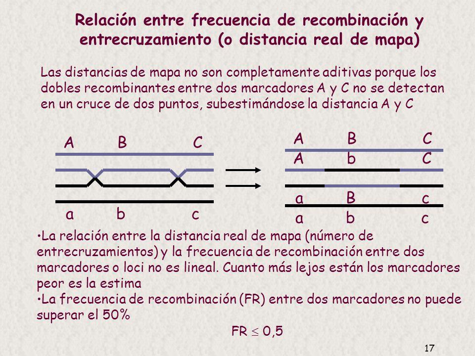 Relación entre frecuencia de recombinación y entrecruzamiento (o distancia real de mapa)