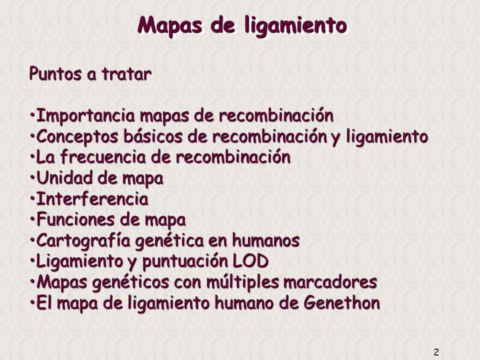 Mapas de ligamiento Puntos a tratar Importancia mapas de recombinación