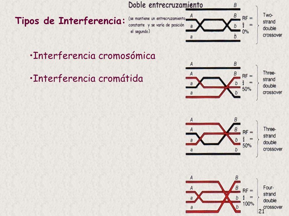 Tipos de Interferencia: