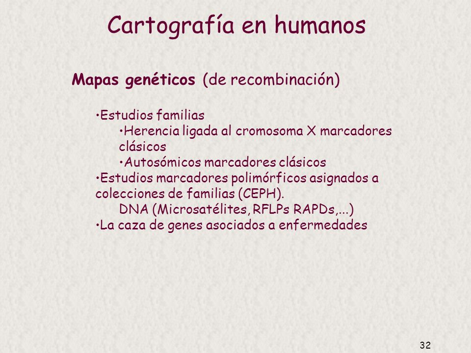 Cartografía en humanos