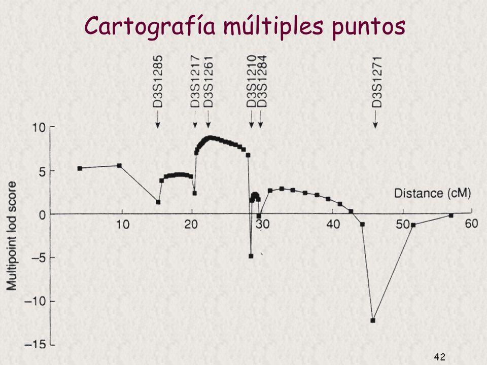Cartografía múltiples puntos
