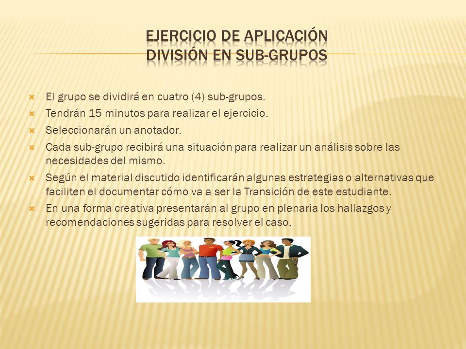 Ejercicio de Aplicación División en Sub-Grupos
