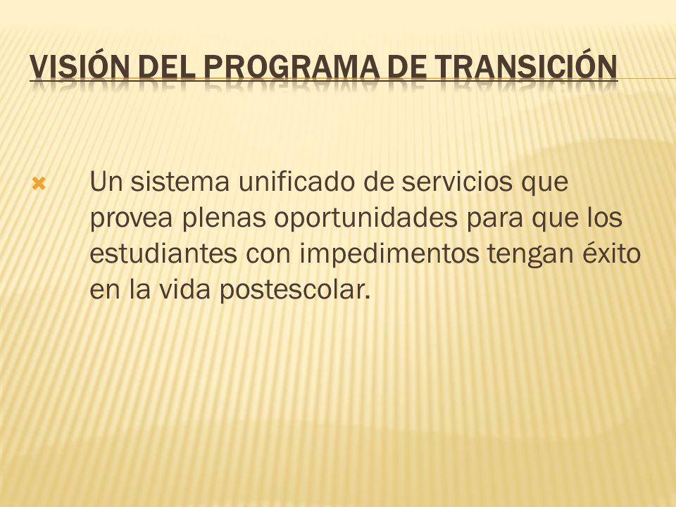 Visión del Programa de Transición