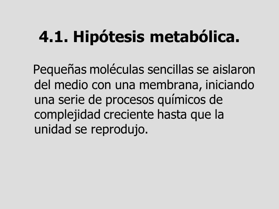 4.1. Hipótesis metabólica.