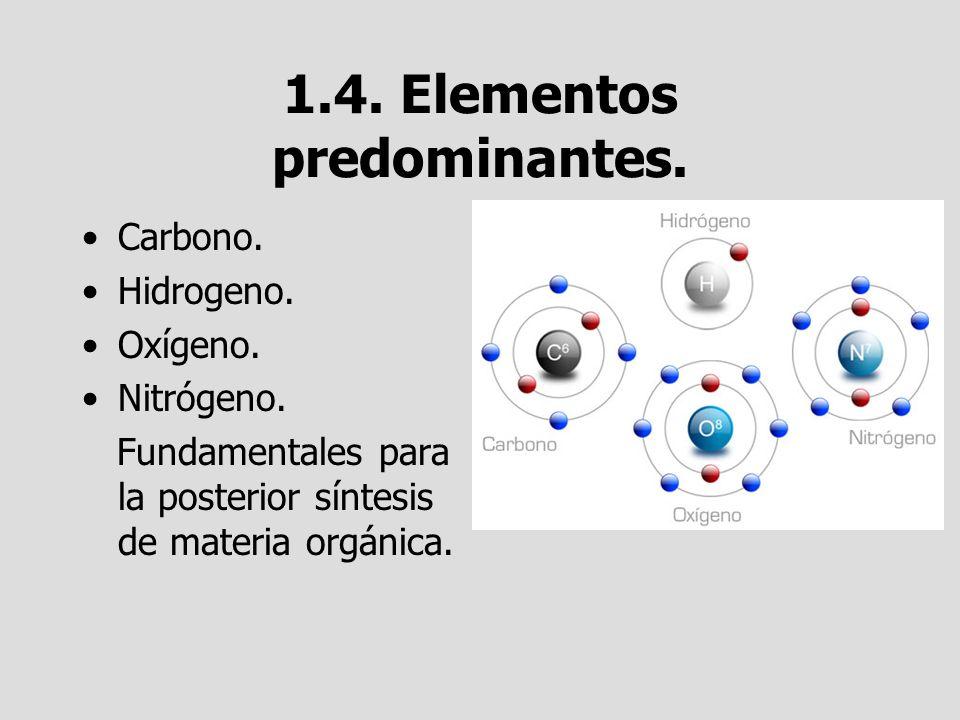 1.4. Elementos predominantes.