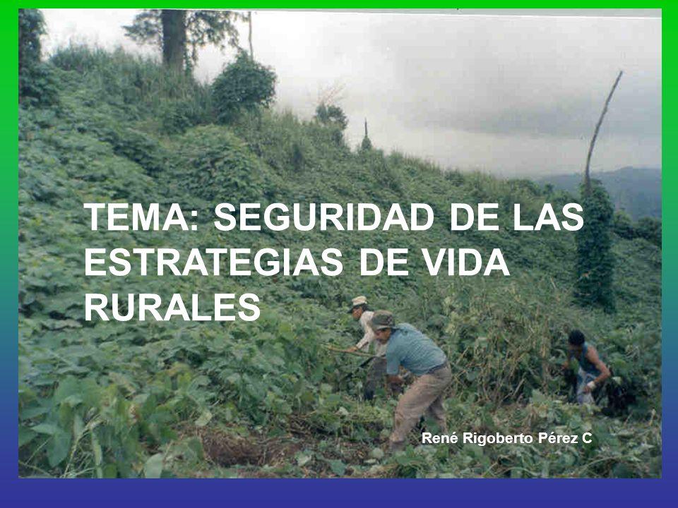 TEMA: SEGURIDAD DE LAS ESTRATEGIAS DE VIDA RURALES