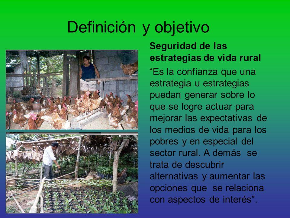 Definición y objetivo Seguridad de las estrategias de vida rural