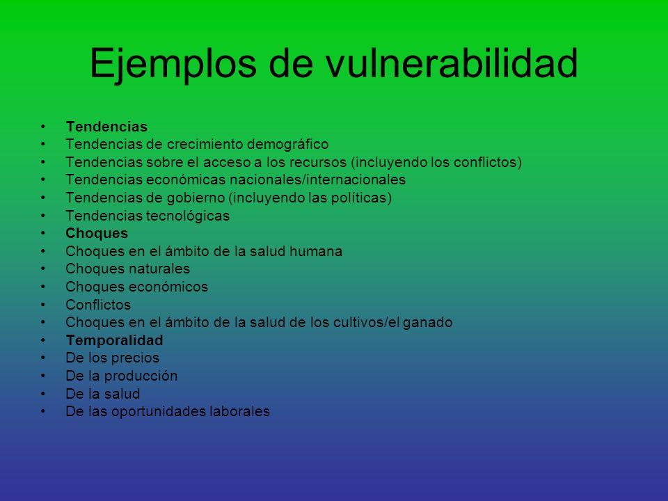 Ejemplos de vulnerabilidad