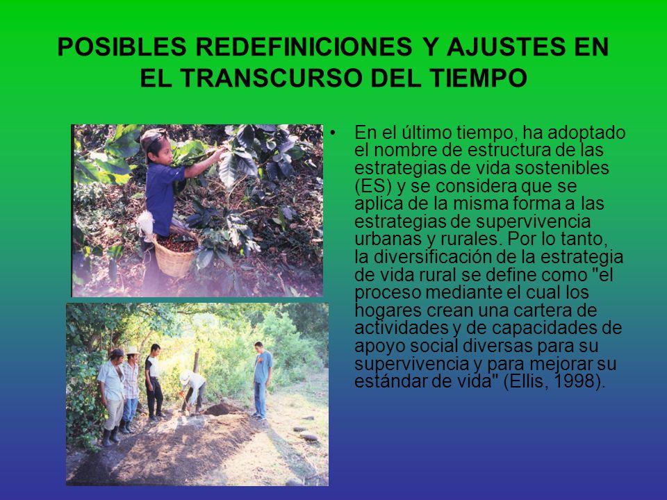 POSIBLES REDEFINICIONES Y AJUSTES EN EL TRANSCURSO DEL TIEMPO