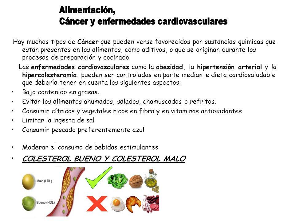 Cáncer y enfermedades cardiovasculares