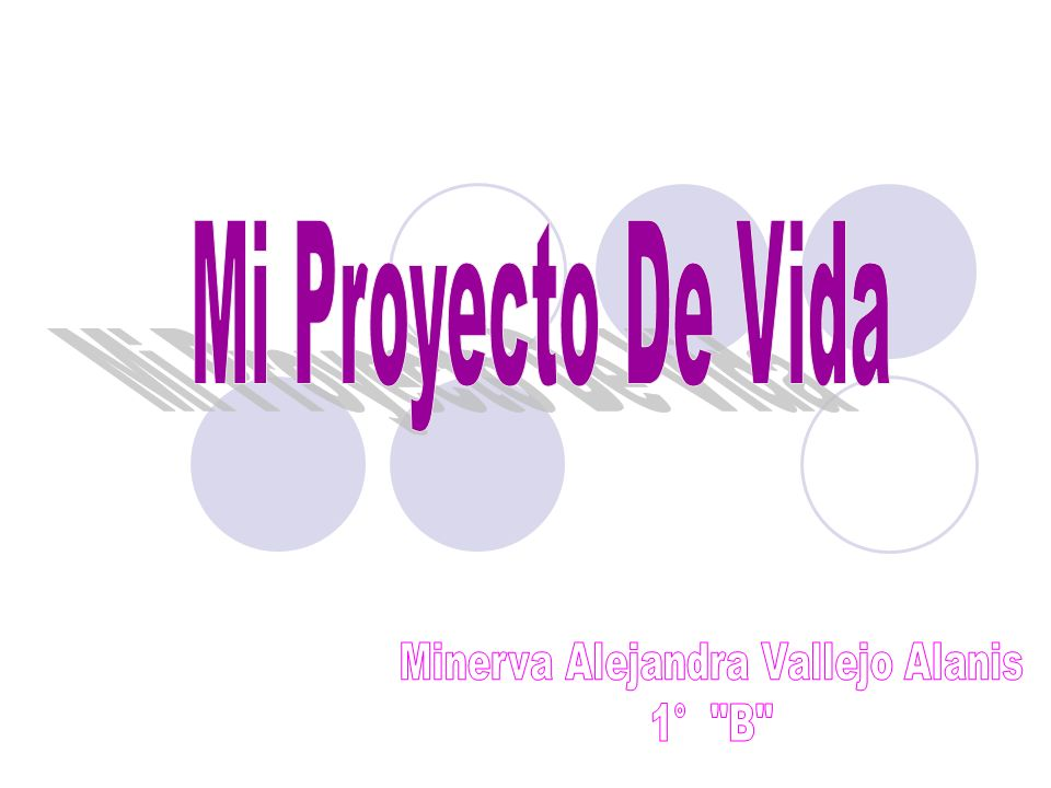 Minerva Alejandra Vallejo Alanis