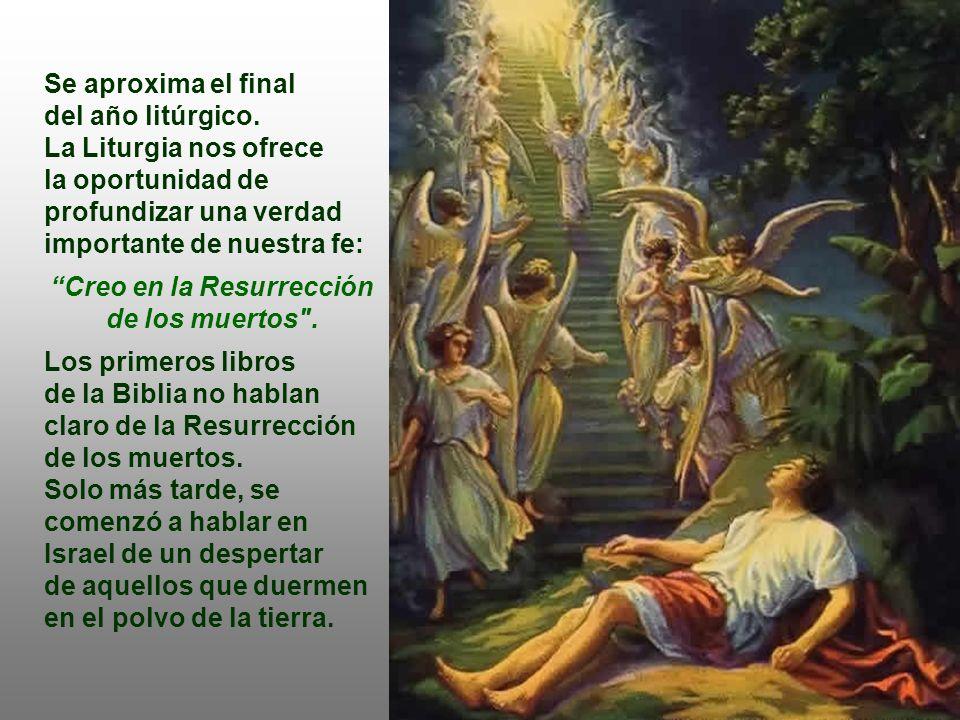Creo en la Resurrección de los muertos .