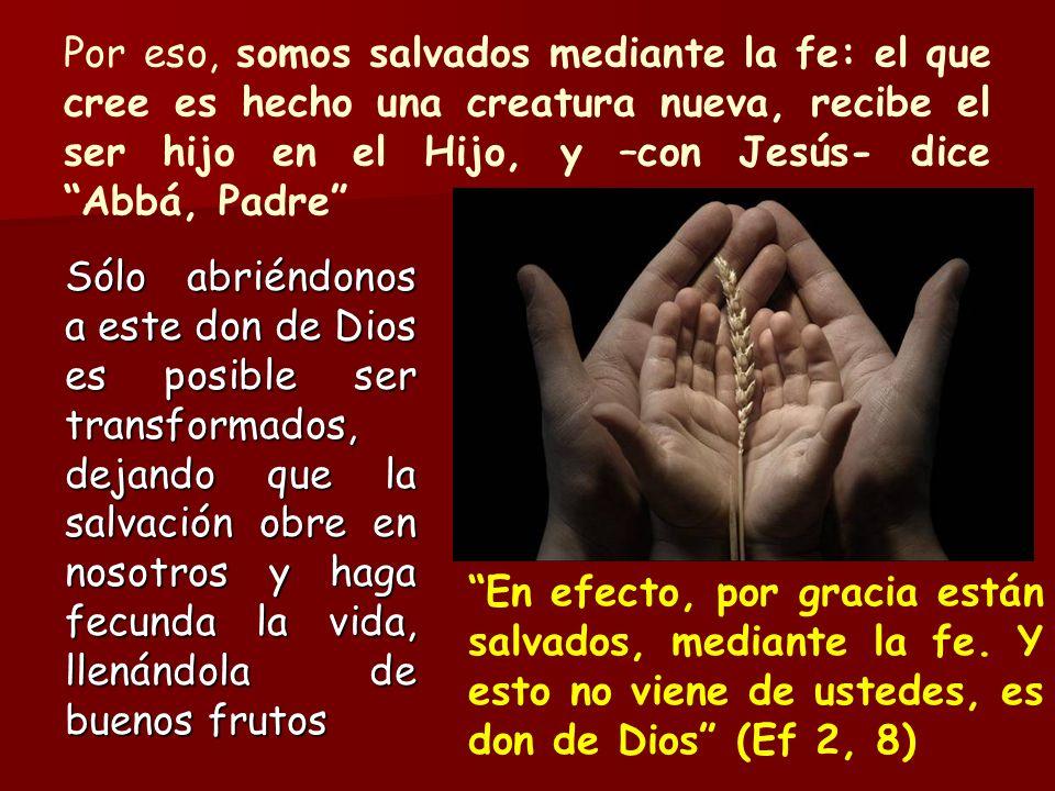 Por eso, somos salvados mediante la fe: el que cree es hecho una creatura nueva, recibe el ser hijo en el Hijo, y –con Jesús- dice Abbá, Padre