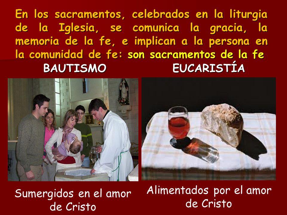 Alimentados por el amor de Cristo Sumergidos en el amor de Cristo