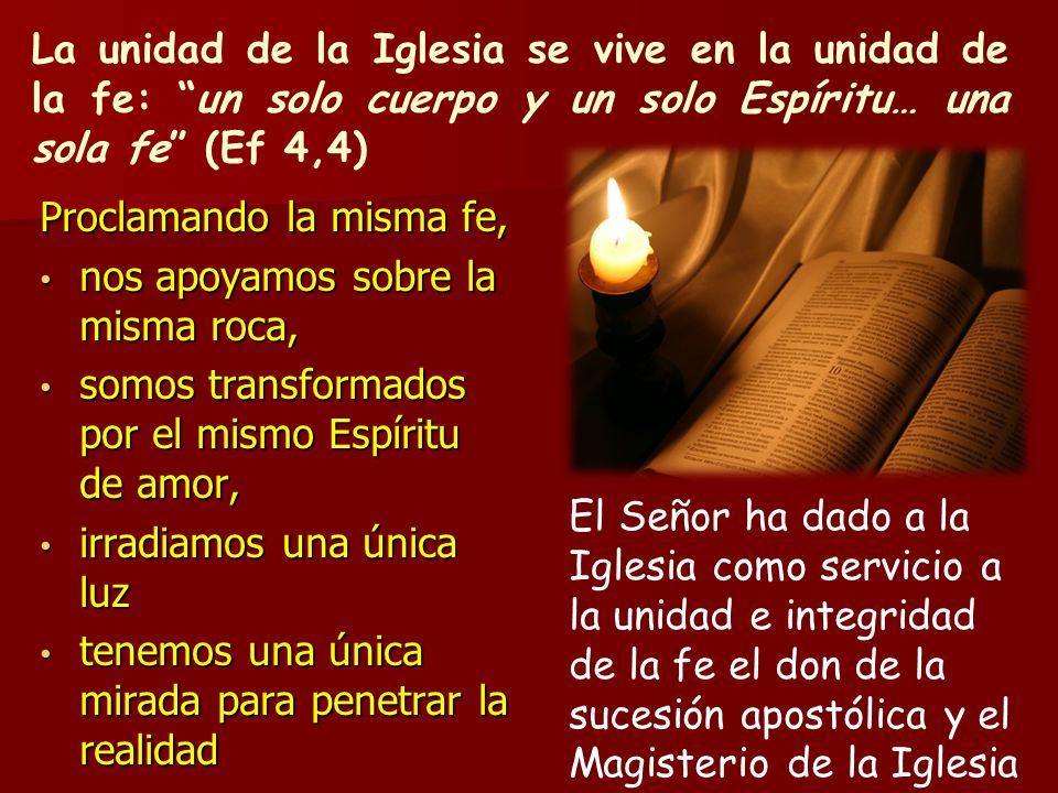 La unidad de la Iglesia se vive en la unidad de la fe: un solo cuerpo y un solo Espíritu… una sola fe (Ef 4,4)