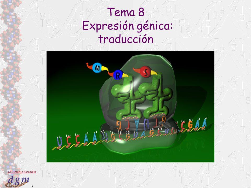 Tema 8 Expresión génica: traducción