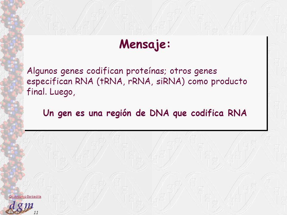 Un gen es una región de DNA que codifica RNA
