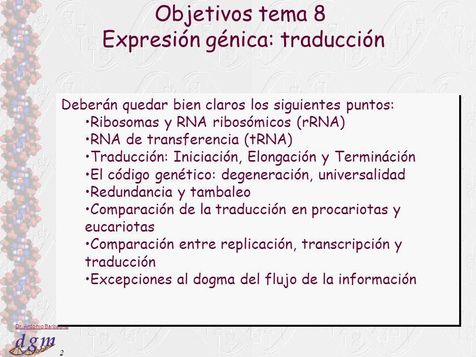 Expresión génica: traducción