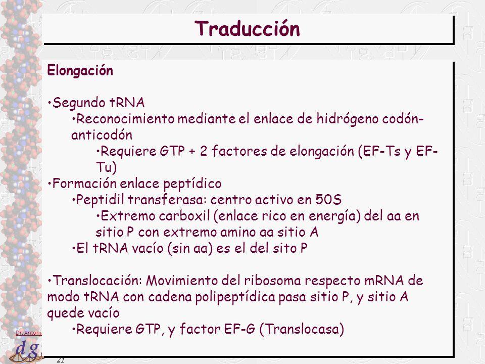 Traducción Elongación Segundo tRNA