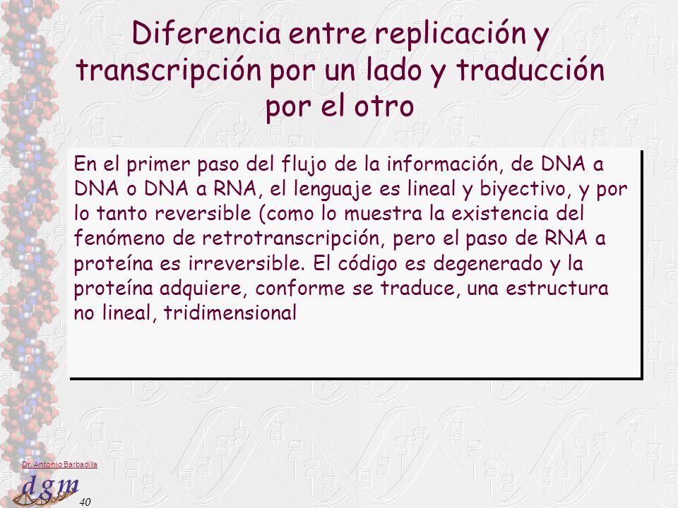 Diferencia entre replicación y transcripción por un lado y traducción por el otro