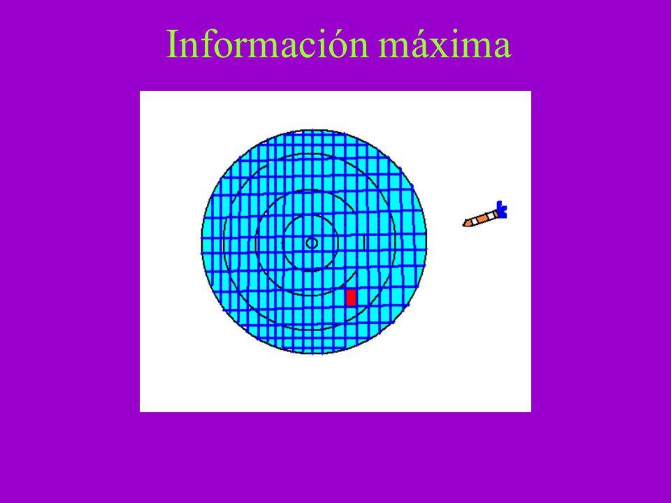 Información máxima