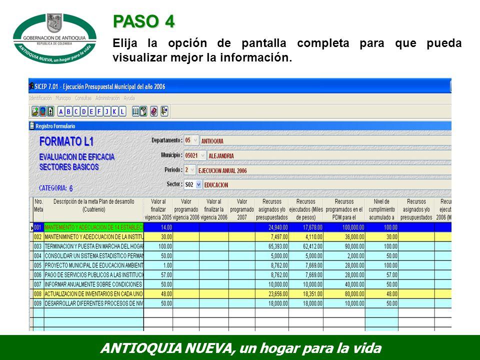 PASO 4 Elija la opción de pantalla completa para que pueda visualizar mejor la información.