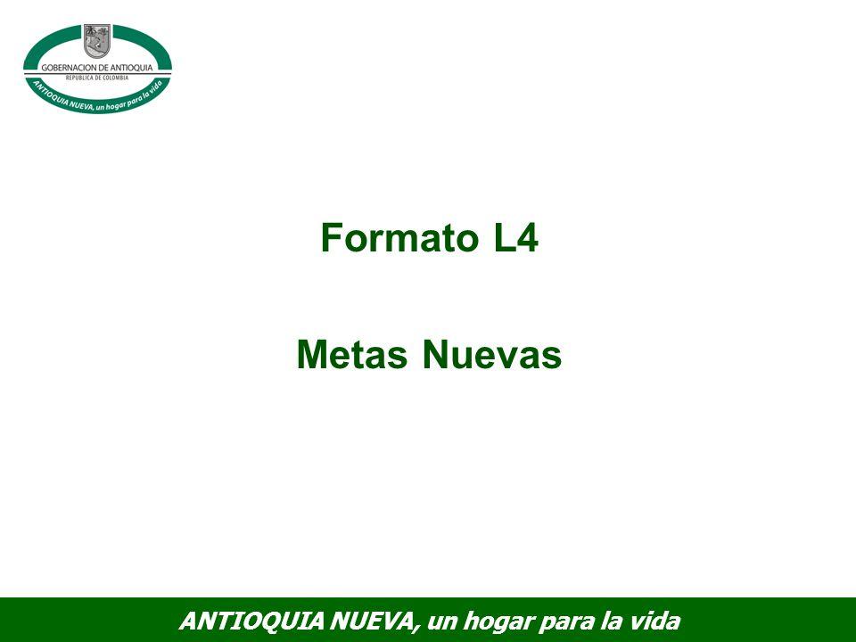 Formato L4 Metas Nuevas