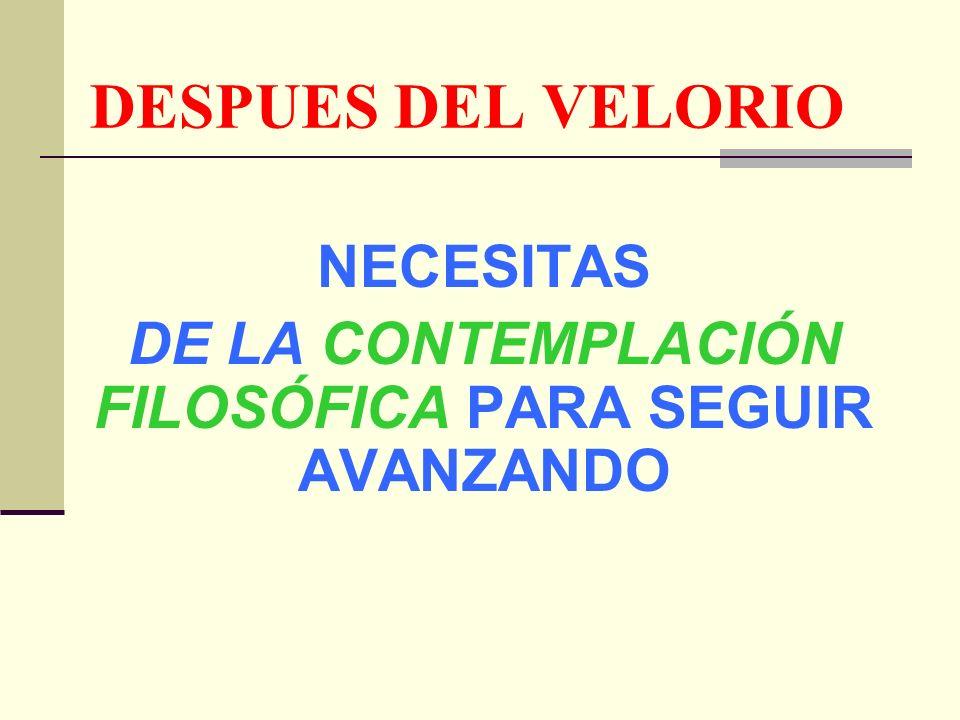 NECESITAS DE LA CONTEMPLACIÓN FILOSÓFICA PARA SEGUIR AVANZANDO