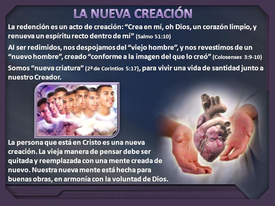 LA NUEVA CREACIÓN