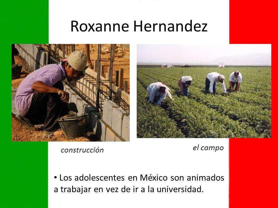 Roxanne Hernandez el campo. construcción.