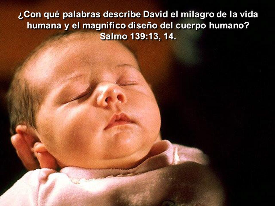 ¿Con qué palabras describe David el milagro de la vida humana y el magnífico diseño del cuerpo humano